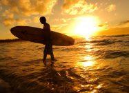 Surf in Australia economia AdviseOnly