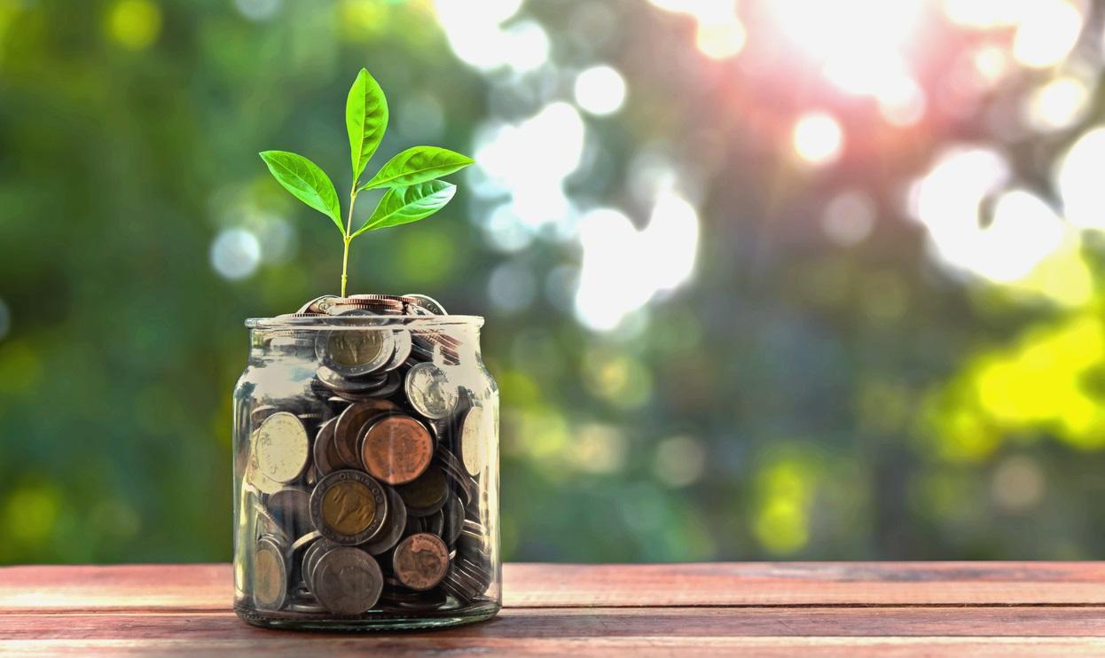Quanto convengono questi Piani Individuali di Risparmio?