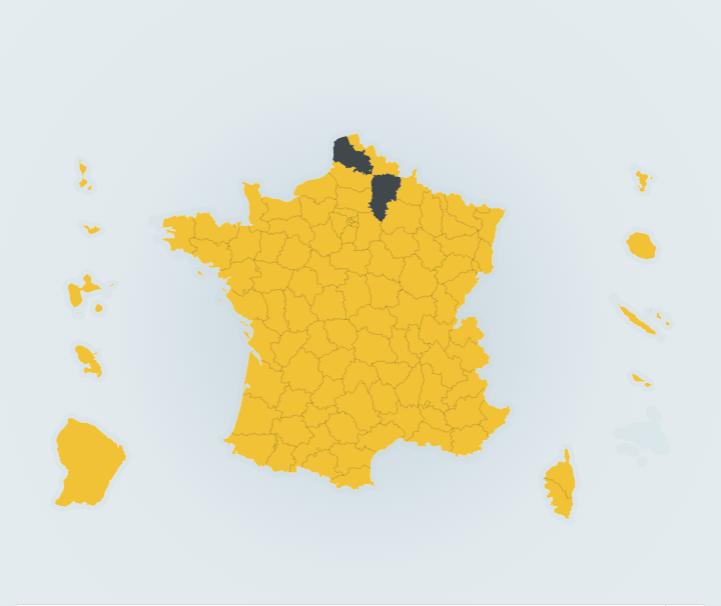 come_hanno_votato_in_francia