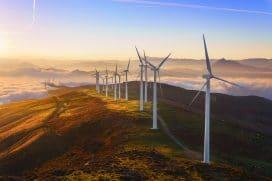 La sostenibilità si basa su tre pilastri: ambiente, sociale e gestione etica dell'impresa. Chi opta per questo tipo di investimento fa bene non solo al portafoglio ma anche al pianeta.