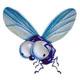 La mosca Impertinente