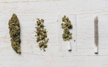 Opportunità e rischi di un investimento nel mercato della cannabis